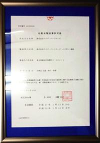 許可番号 11CZ200256